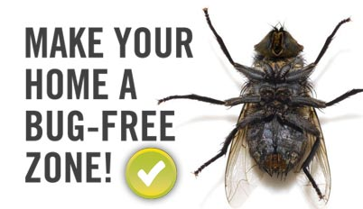 make your home a bug free zone